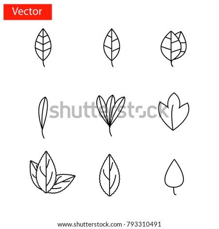 Leaf icon set Vector.Mobile application.Web design. #793310491