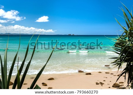 Tropical beach, Byron Bay Australia #793660270