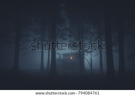 scary house in mysterious horror forest at night Royalty-Free Stock Photo #794084761
