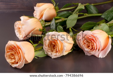 five fresh beige roses on a dark wooden background #794386696
