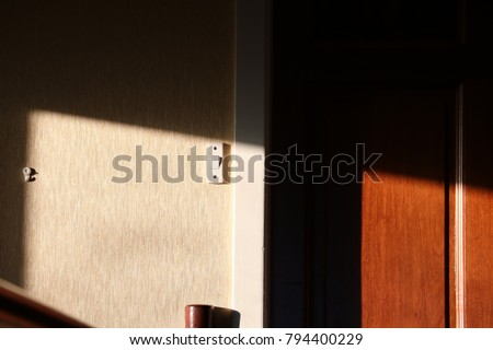 A harsh contrast of light and dark over a light switch and door #794400229