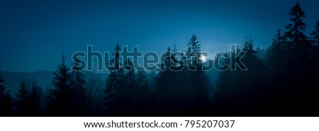 Night mysterious panoramic landscape in cold tones - silhouettes of the spruce forest under the full moon and dramatic night sky.