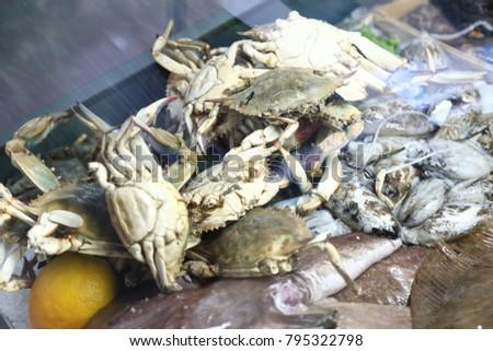 white fresh crabs in a fridge #795322798
