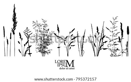 object grass silhouette. Vector #795372157