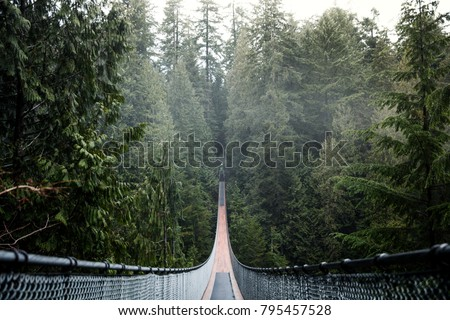 Capilano Suspension Bridge. Vancouver British Columbia Canada. Nature. Evergreen. Royalty-Free Stock Photo #795457528