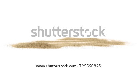 Sea shells in sand pile isolated on white background #795550825