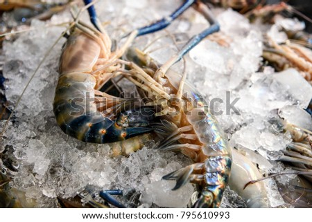 Fresh shrimp in the local market for cooking #795610993