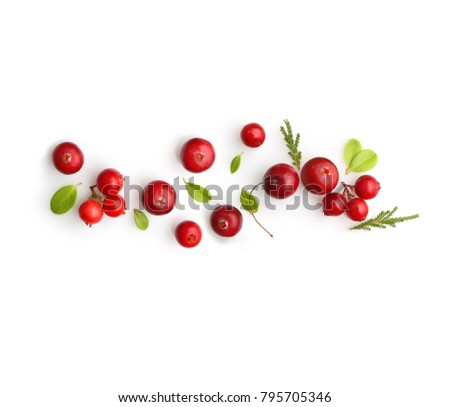 Fresh forest berry cranberry isolated on white background. #795705346
