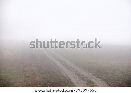 Thick fog in the dark mountain forest in late autumn. Cold waether, winter is comming. Scary meadow #795897658