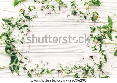 fresh daisy lilac flowers and green herbs frame on white wooden rustic background top view. happy earth day. hello spring flat lay. greeting card. space for text. mock-up. happy mothers day #796736290