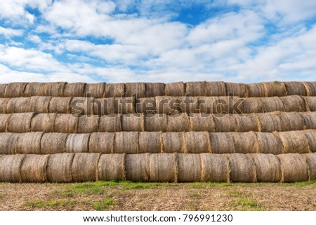 Hay rolls in stack on field. #796991230