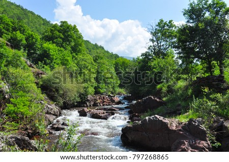 Panoramic view of mountain river in summer, Old Mountain, Serbia. Wild and cold mountain river.  #797268865