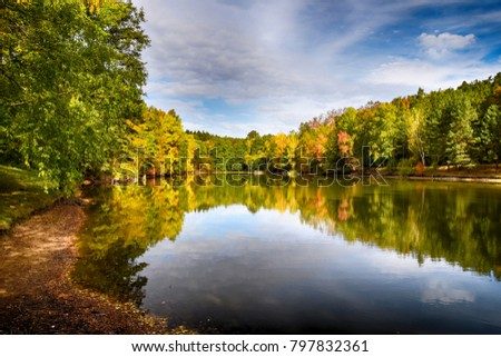 lake in the woods #797832361