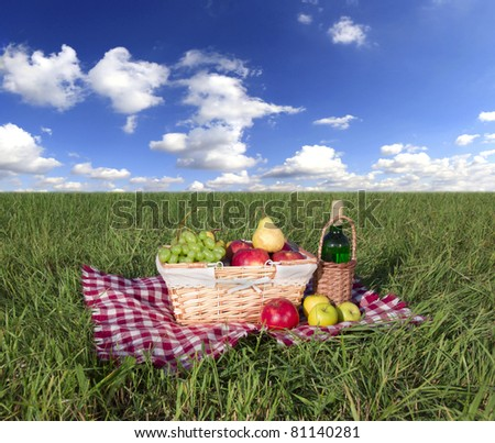Picnic at meadow with perfect sky background #81140281