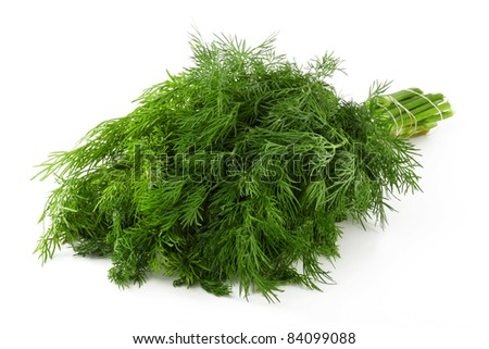 A beam of fresh green leaves of dill #84099088