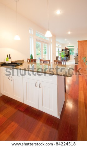 Beautiful New Kitchen and Hallway Interior #84224518