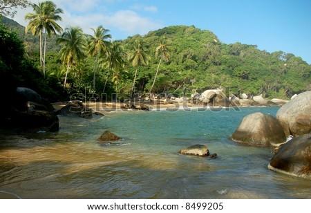 Beautiful Caribean Beach #8499205