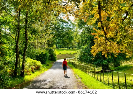 Female hiker walking through early Autumn woodland #86174182