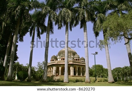 mughal architecture and palm trees, lodhi gardens, delhi, india #8620270