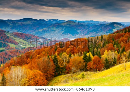 the mountain autumn landscape with colorful forest #86461093