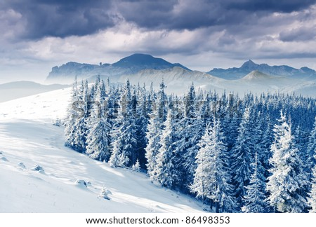 Beautiful winter landscape with snow covered trees #86498353