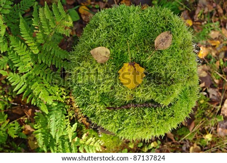 Close up of cut tree with thick moss looks like a face #87137824