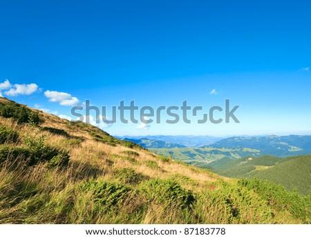 Summer mountain glade view (Carpathian, Ukraine) #87183778