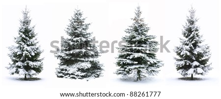 Christmas Tree - Isolated over White background #88261777