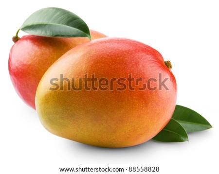 mango fruit isolated on white background #88558828