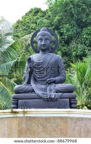 black buddha #88679968