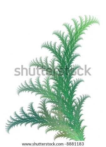Abstract fractal background. Computer generated graphics. Plant texture. #8881183