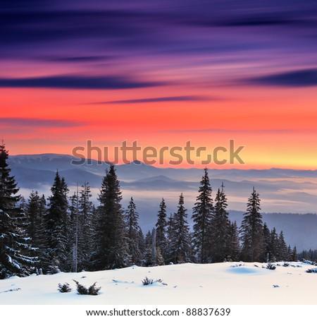 Winter landscape on a sunset. Mountains Carpathians, #88837639
