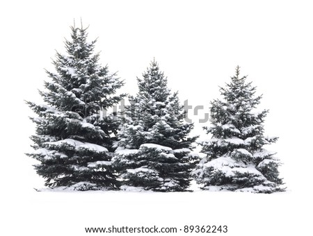 Christmas Tree - Isolated over White background #89362243