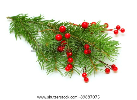 Christmas green branch with red berry isolated #89887075