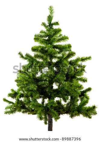 Christmas Tree Isolated On White Background #89887396