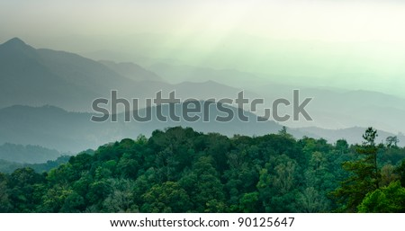 The scenery of Doi Inthanon National Park, Chiang Mai, Thailand #90125647