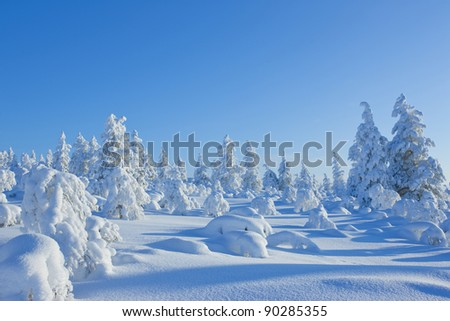 In winter the air in Finland, and a lot of snow #90285355