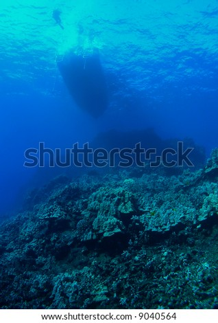 Diver gets ready to descend into the Deep #9040564