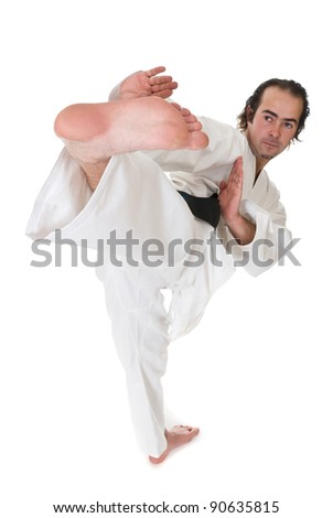 Karate fighter on white background #90635815