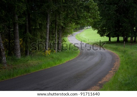 A gentle country road winds through spring woods with a spot of sun shining on lush green grass in the distance. #91711640