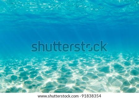Underwater #91838354