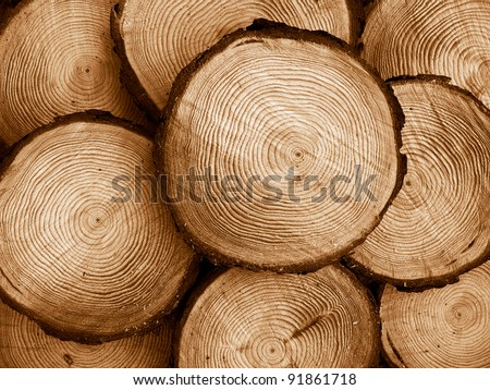 pile of sawed pine wood, duo-tone image