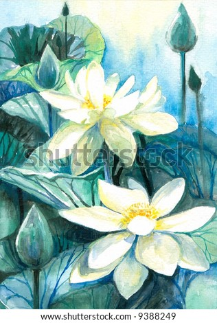 White lotus flower.Picture I have painted by myself with watercolors.