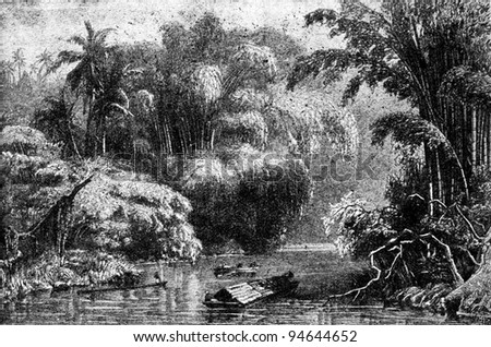 """rain forest in South Asia - an illustration from the book """"Starting course of Geography"""", Moscow, 1926"""