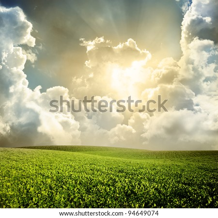 Green meadow under blue sky with clouds #94649074