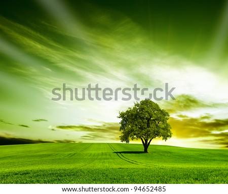 Green landscape #94652485