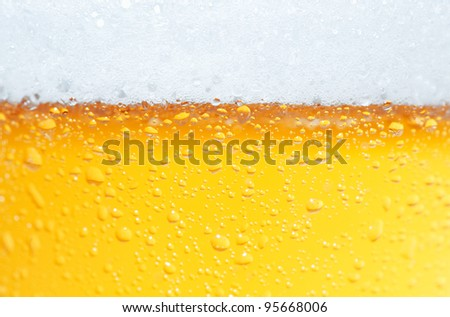 Close-up picture of a beer with bubbles and its foam.