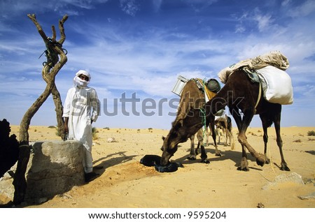Desert beduin with two camels drinking the water of a sahara desert well; Algeria, Africa. #9595204