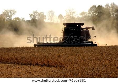 Combine Harvester harvesting crop #96509881