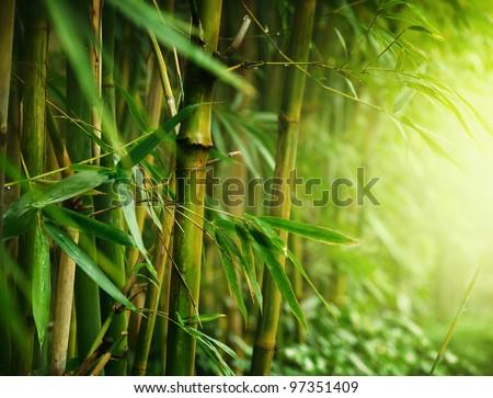 Bamboo Royalty-Free Stock Photo #97351409